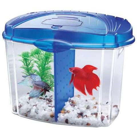 Betta Bowl Kit With Divider