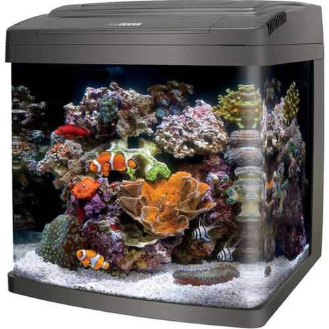 Coralife Bio Cube Led Aquarium