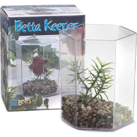 Betta Keeper Kit