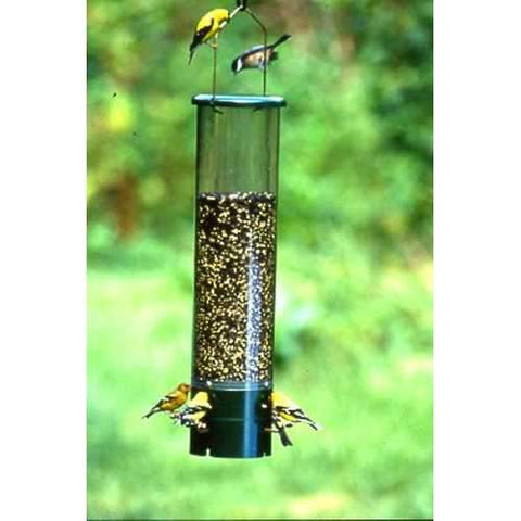 Bouncer Squirrel Proof Bird Feeder