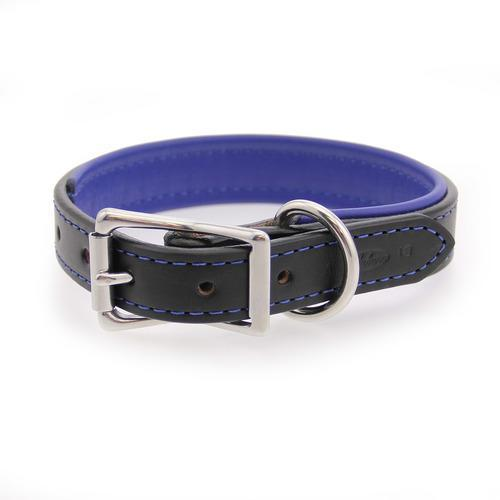 Two-Tone Padded Leather Dog Collar by Auburn Leather - Black and Blue