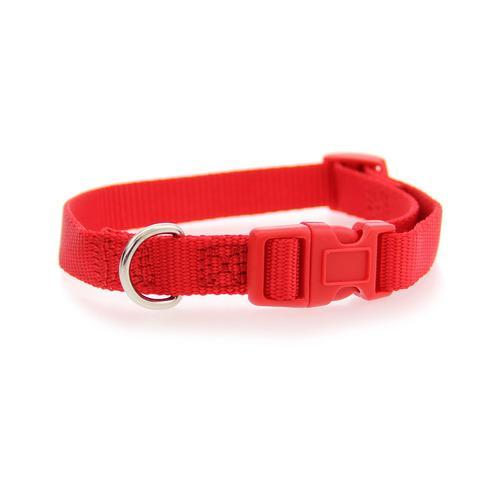Nylon Dog Collar by Zack & Zoey - Tomato Red