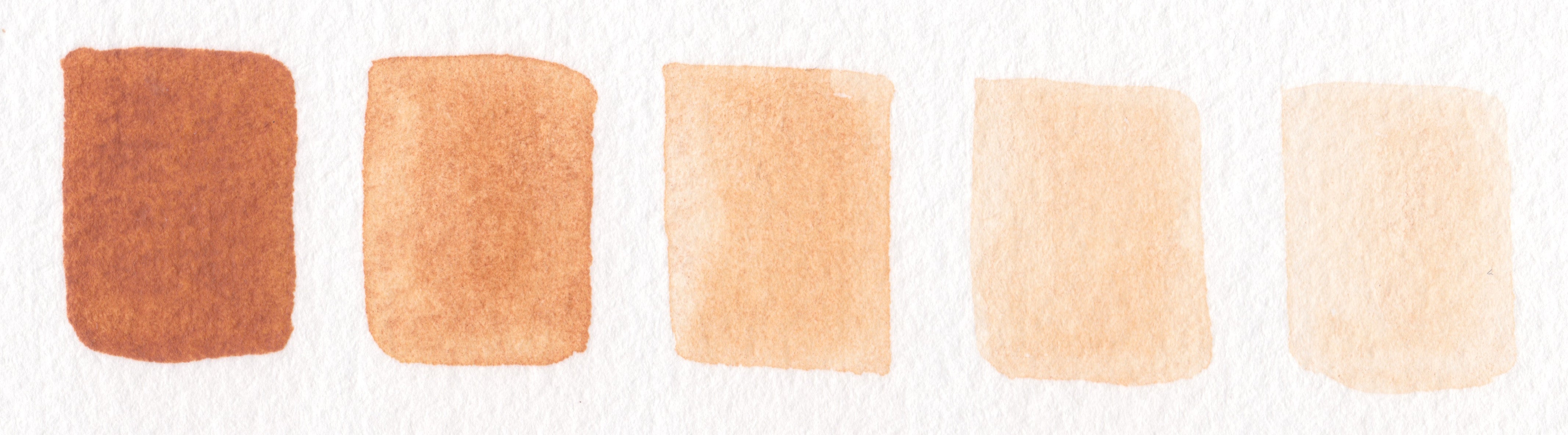 Raw Sienna half pan