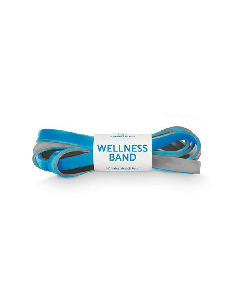 Wellness Band (Blue/Grey)