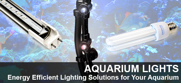 Save Energy with LED Aquarium Lights