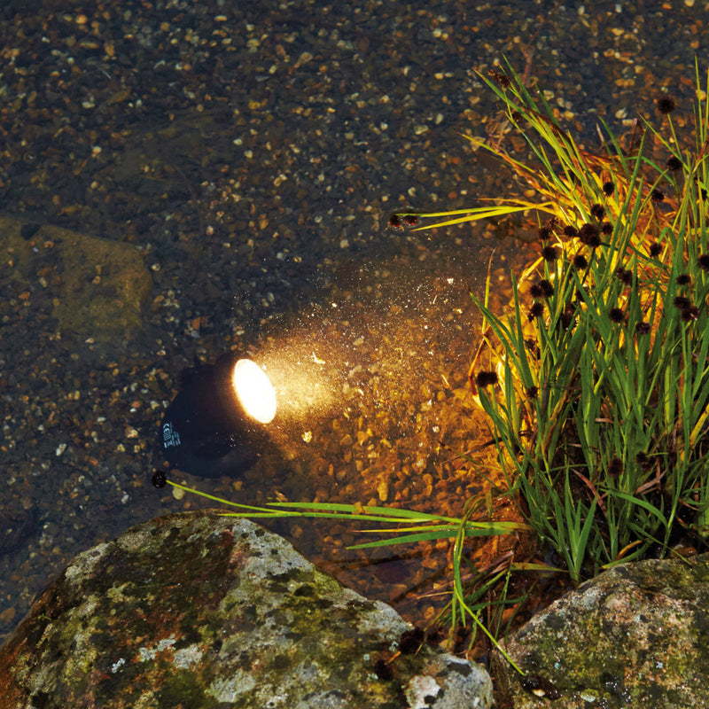 Lighting Your Pond in Style