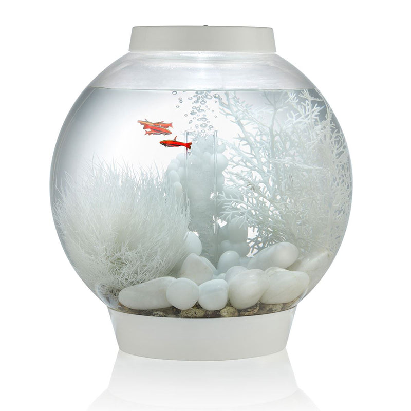 Oase biOrb Aquarium Marble Pebble Packs