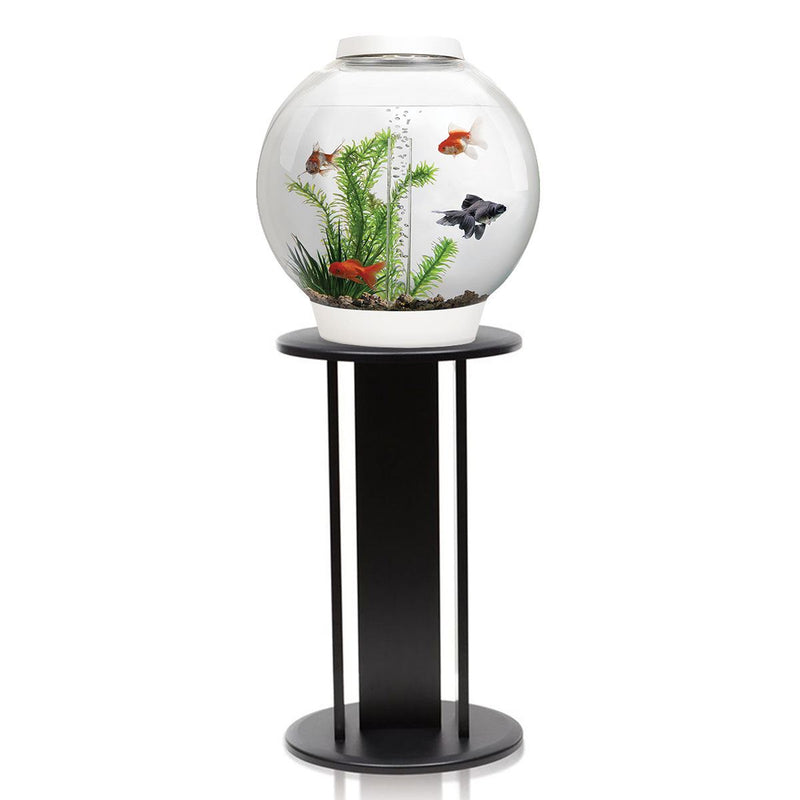 biOrb Classic 30L White Aquarium with MCR LED Lighting