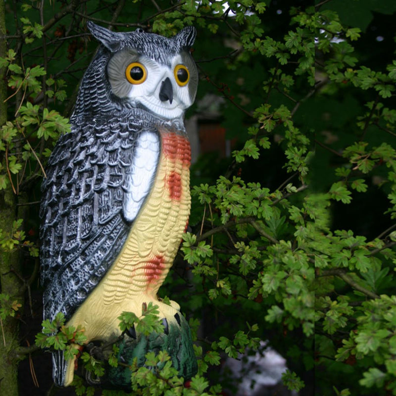 Pisces Twin Pack Decorative Decoy Owls