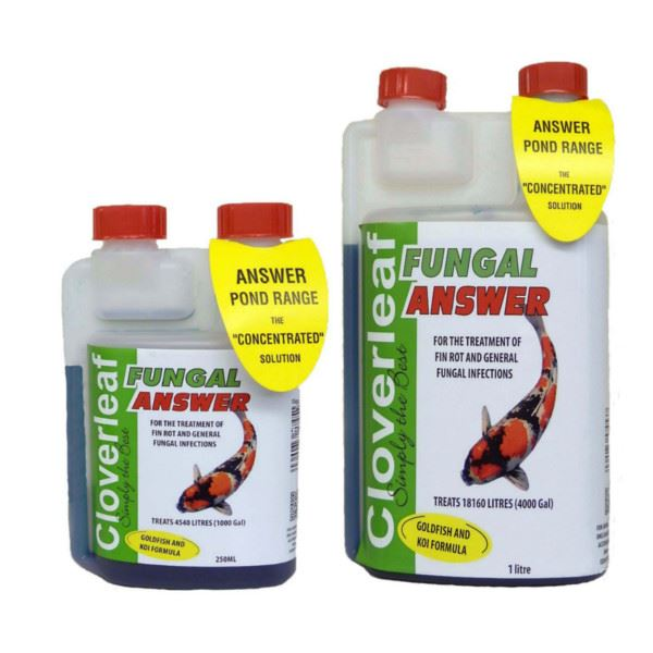 Cloverleaf Fungal Answer Koi Treatment