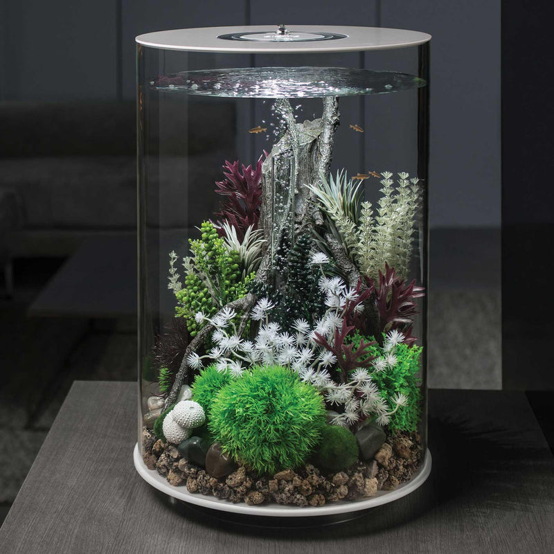 Oase biOrb Amazonas Root and Elements Aquarium Ornaments