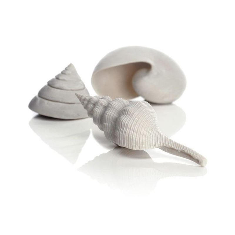 Oase biOrb Ornament Assorted Sea Shells