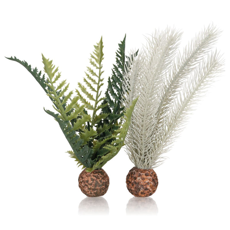 Oase biOrb Decorative Plant - Thistle and Fern Small