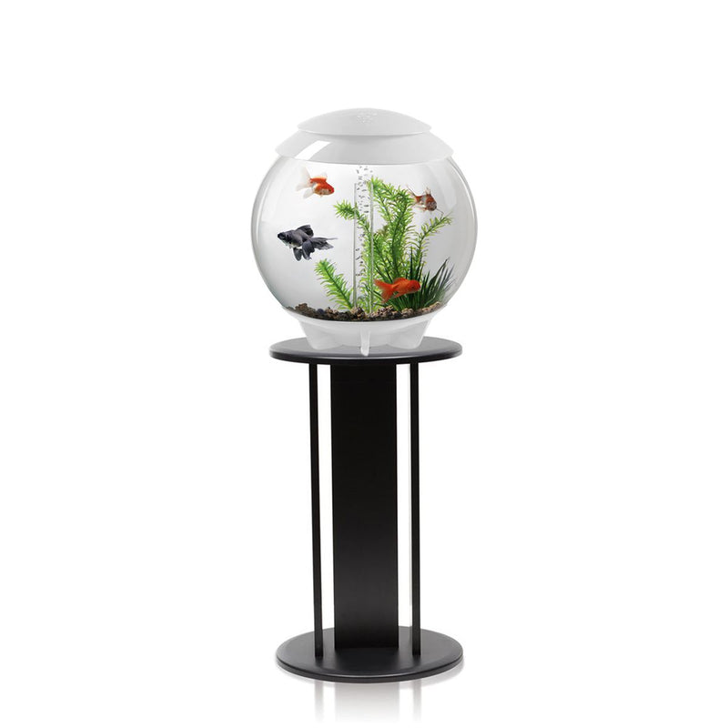 biOrb Halo 30L White Aquarium with MCR LED Lighting