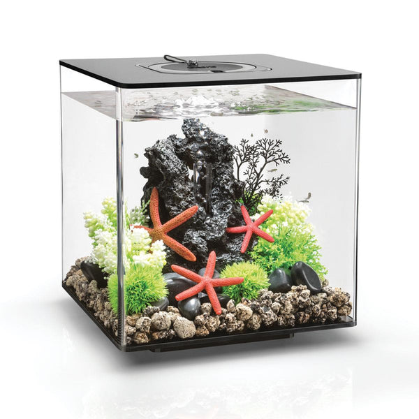 biOrb CUBE 30L Black Aquarium with Standard LED Lighting
