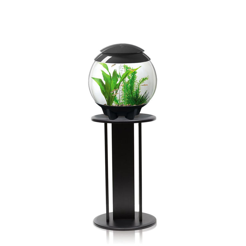 BiOrb Halo 15L Aquarium Grey with MCR Lighting