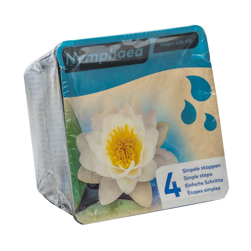 Moerings Water Lily Pond Plant Kit