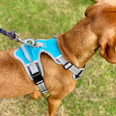 Henry Wag Medium Dog Harness