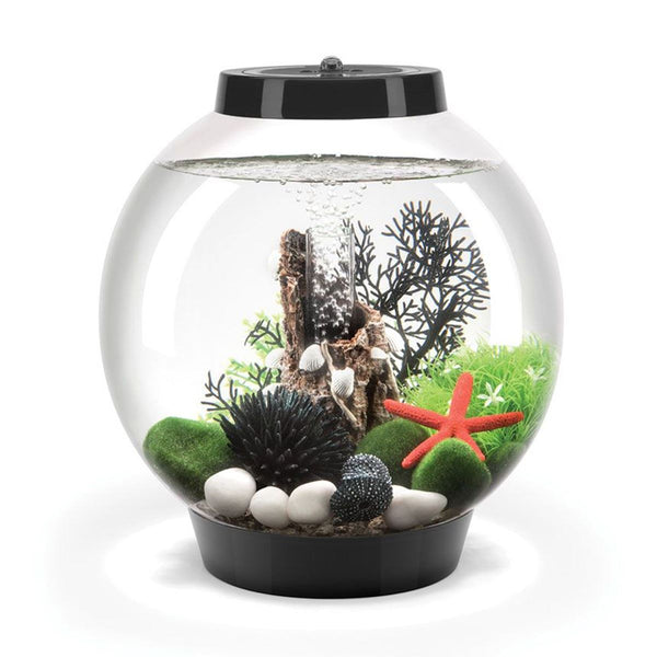 Baby biOrb 15L Black Aquarium with Standard LED Lighting