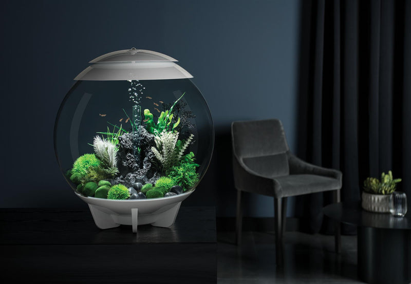 biOrb Halo 60L White Aquarium with MCR LED Lighting