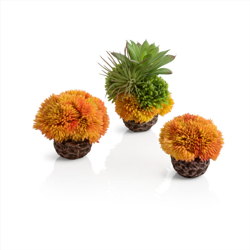 Oase BiOrb Aquarium Decorative Coral Ball Sets
