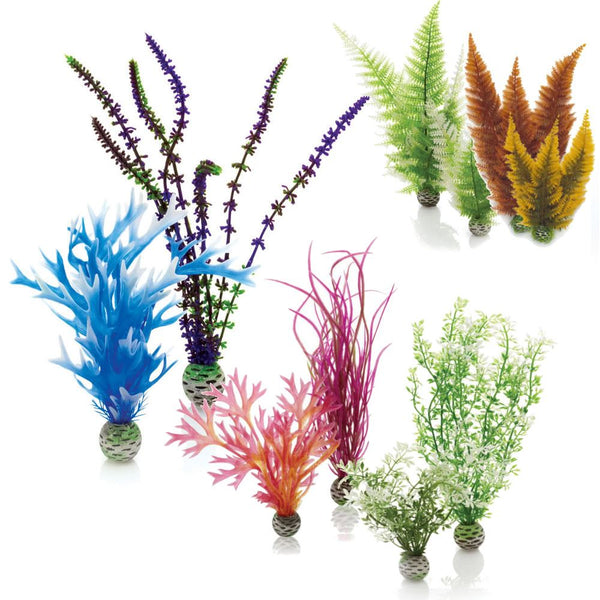 Oase biOrb Aquarium Easy Plant Packs