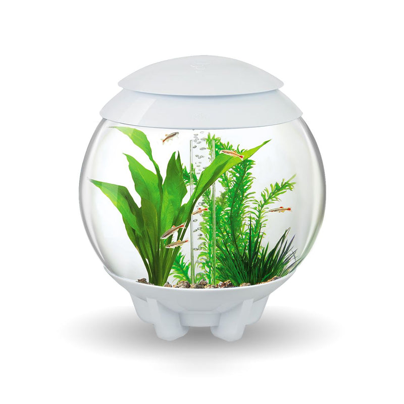 BiOrb Halo 15L Aquarium White with MCR Lighting