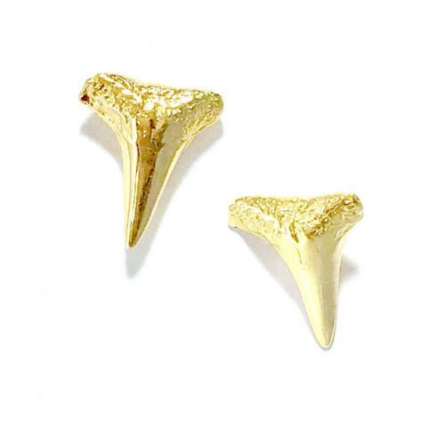 Exclusive Shark Teeth Studs