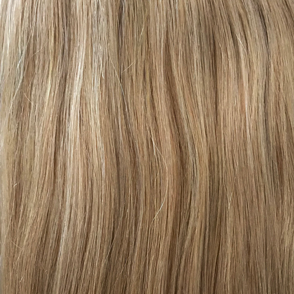 Honey Blonde (#22) Clip Ins