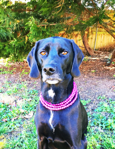 Pink Multi-Strand Dog Pearls
