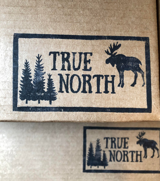 TRUE NORTH FALL 2020 Reveal