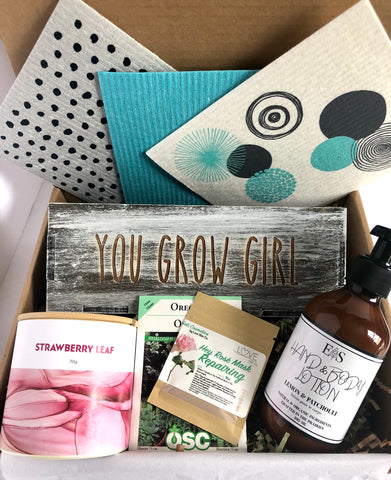 True North Summer Subscription Canadian small business