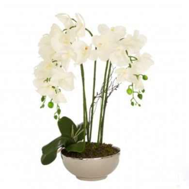 Faux White Orchid in Silver Pot 65cm