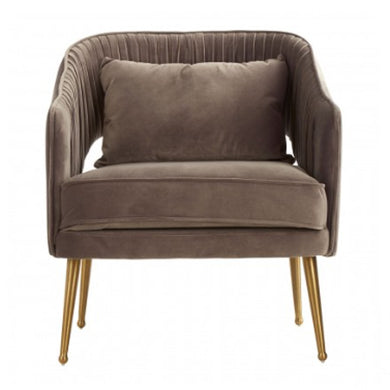 Boutique Hotel Grey Velvet Chair
