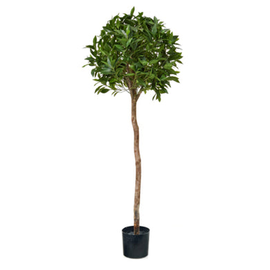 Artificial Laurel Ball Tree