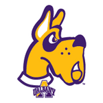 UAlbany University at Albany The Great Danes Apparel – Official Team Gear