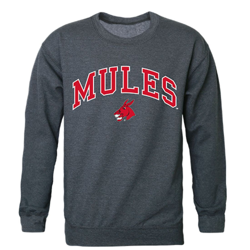 UCM University of Central Missouri Campus Crewneck Pullover Sweatshirt Sweater Heather Charcoal