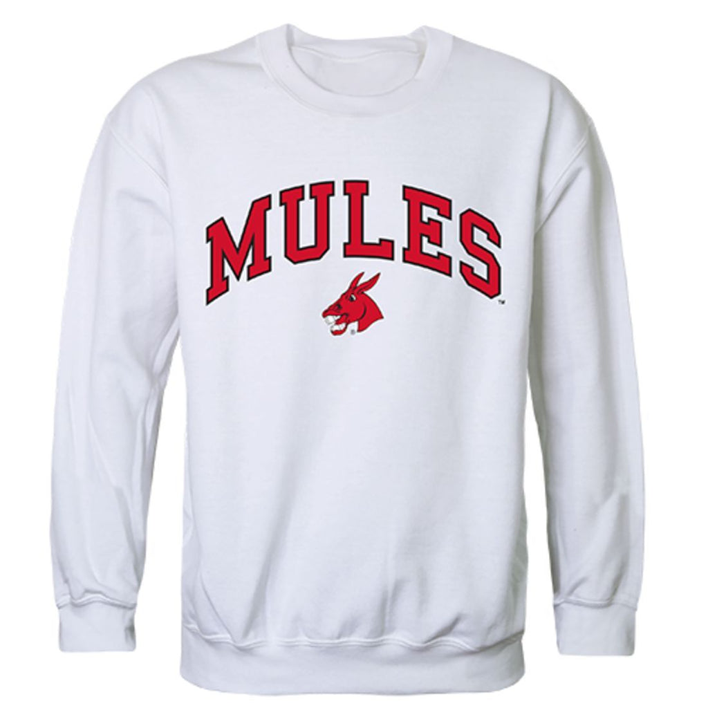 UCM University of Central Missouri Campus Crewneck Pullover Sweatshirt Sweater White