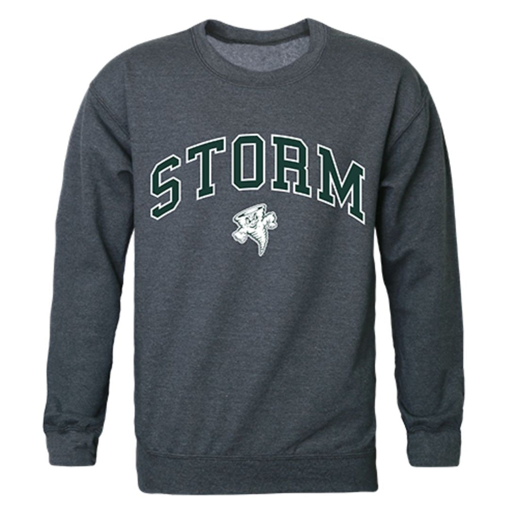 Lake Erie College Campus Crewneck Pullover Sweatshirt Sweater Heather Charcoal