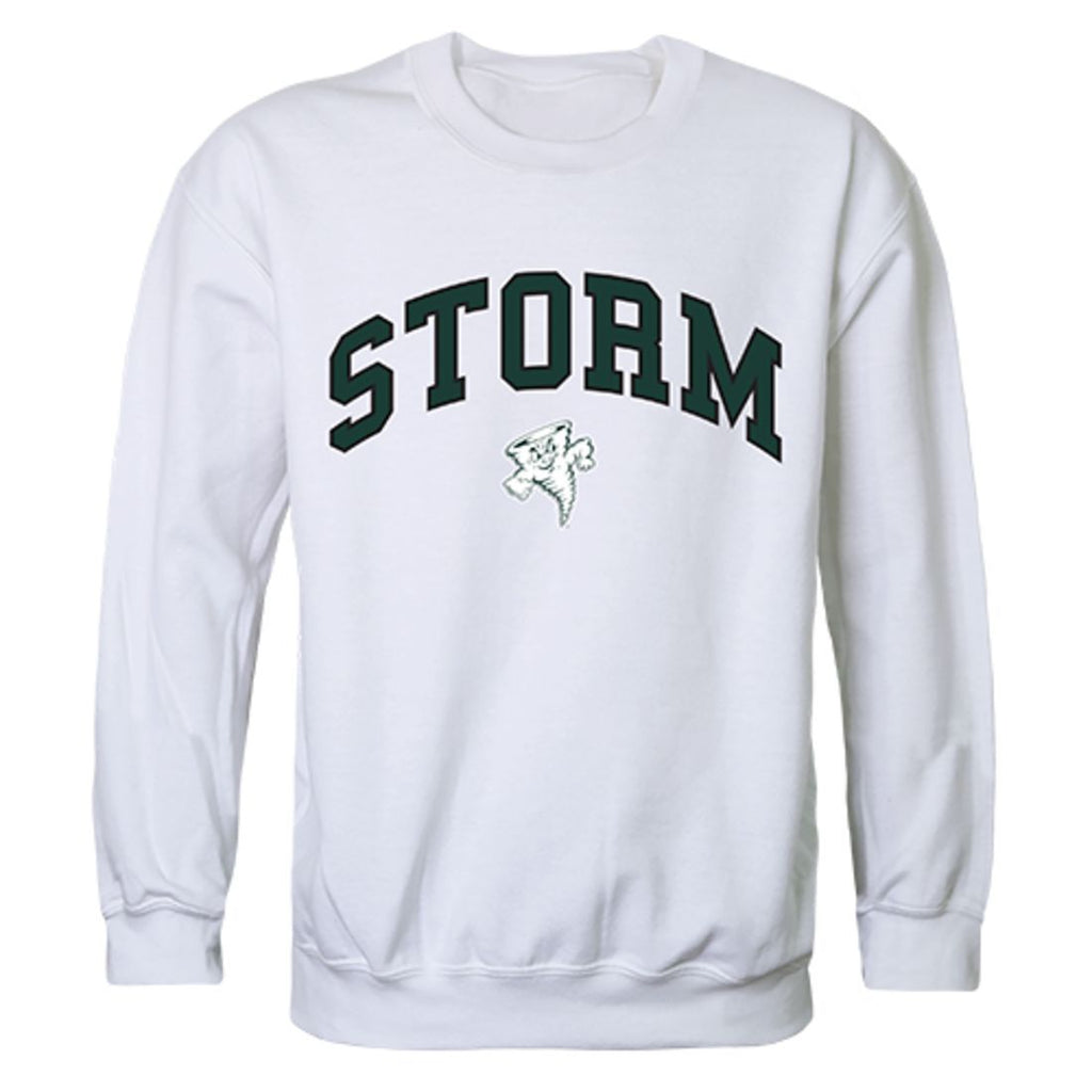 Lake Erie College Campus Crewneck Pullover Sweatshirt Sweater White