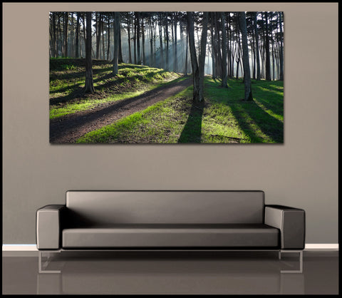 """Presidio Trees"" San Francisco Fine Art Gallery Wrapped Canvas Print"