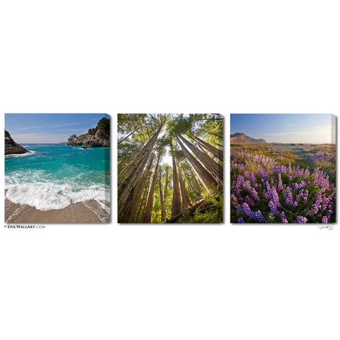 """The California Coast"" 3-Piece Fine Art Gallery Wrapped Canvas Set"