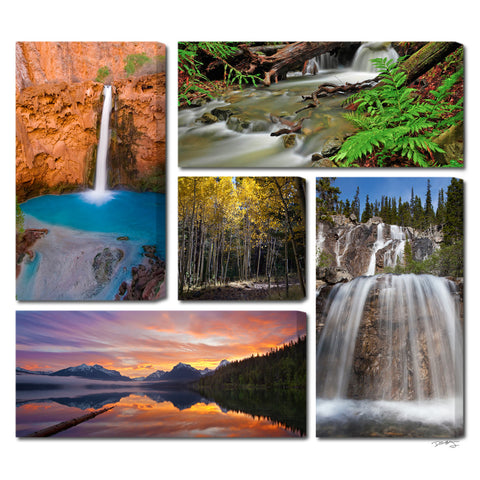"""Colors of Nature"" 5 Piece Epic Gallery Wrapped Canvas Wall Display"