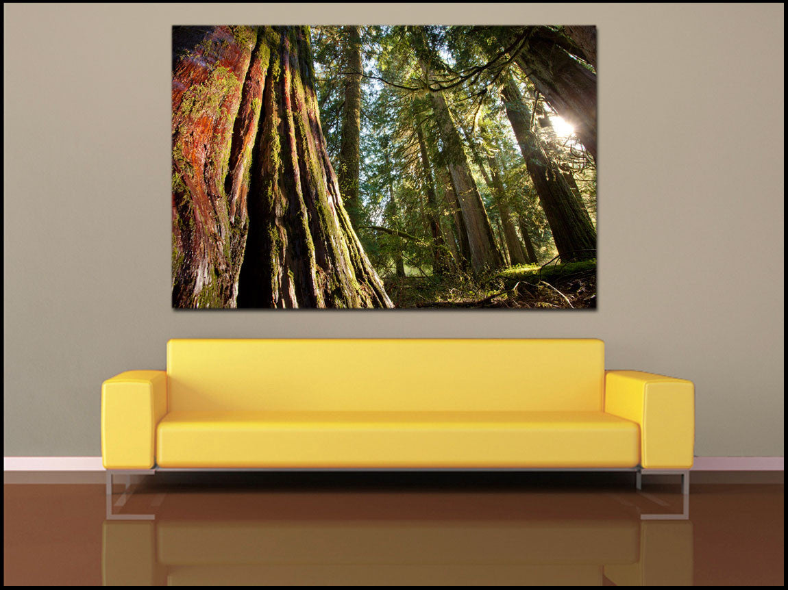 Shop for Wall Art by Shape: Horizontal, Square Vertical, & More (ALL ...