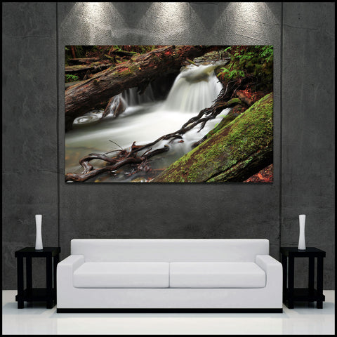 """Fern Creek Falls"" Muir Woods Fine Art Gallery Wrapped Canvas Print"