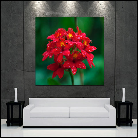 """Flowers After Rain"" Square Fine Art Gallery Wrapped Canvas Print"