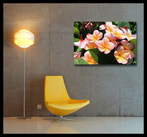 """Tropical Frangipanis"" Fine Art Gallery Wrapped Canvas Print"