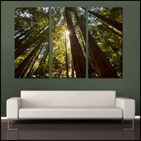 towering forest sunlight tryptich 3 piece fine art canvas wall