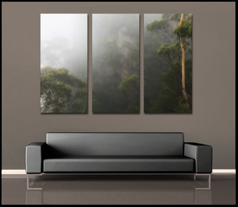 """The Hidden Forest"" Australia 3-Piece Fine Art Canvas Wall Display"