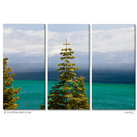 """Tahoe Pine"" 3-Piece Fine Art Gallery Wrapped Canvas Wall Display"